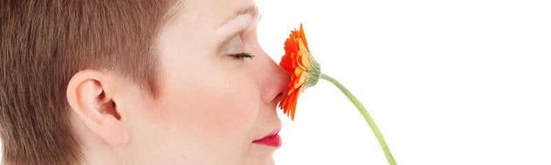Le pouvoir des odeurs