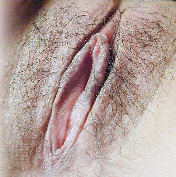 Vulve humaine - sexe féminin